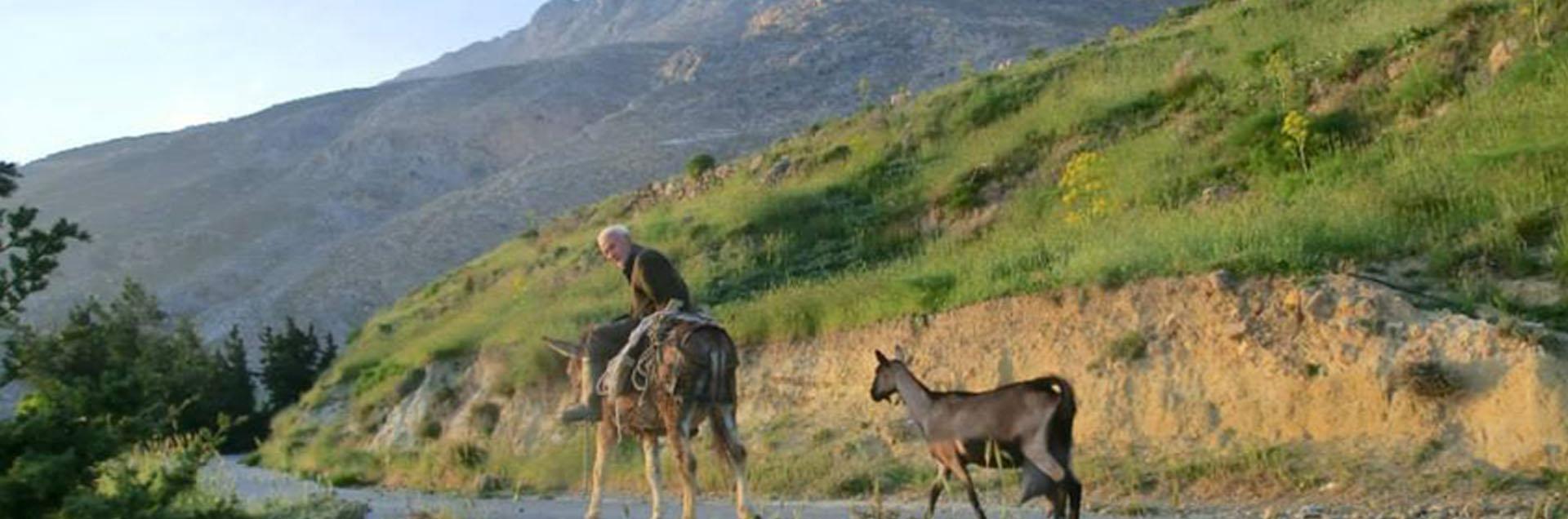 Equine Outreach